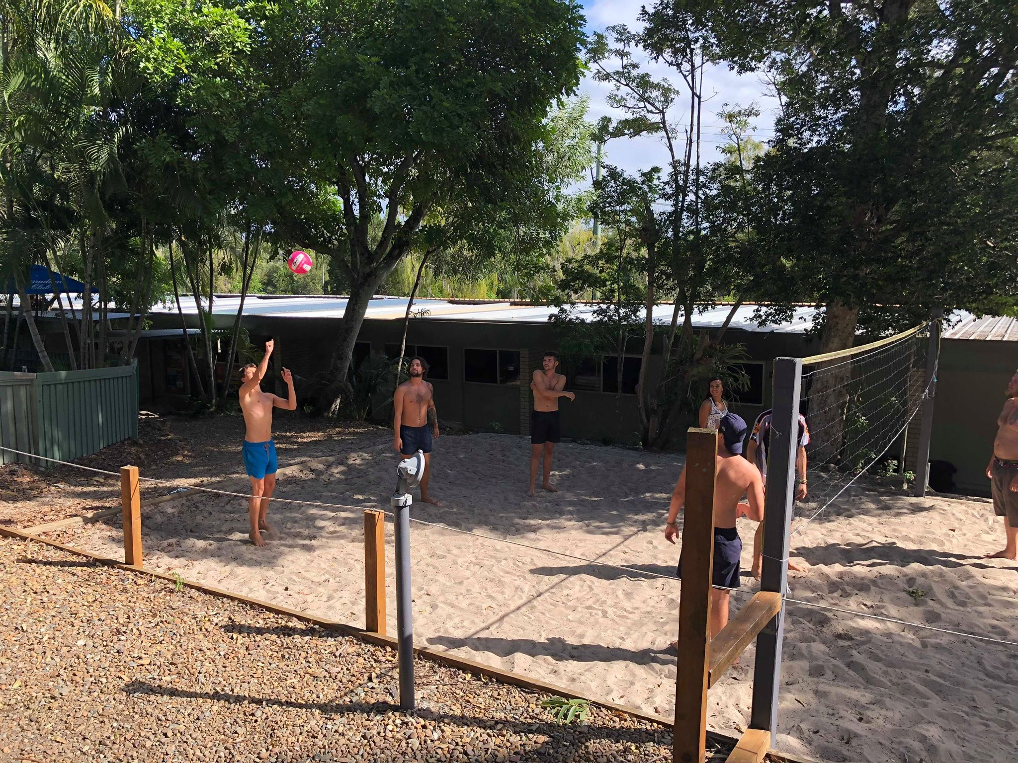 Volleyball6