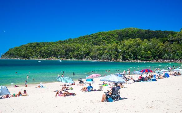 beach noosa