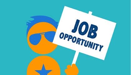 201708091305-11472-Job-Opportunity-05