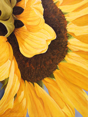 The center of a golden sunflower
