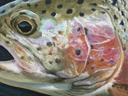"Cody's Rainbow, 24""w x 18""h, painted for a fundraiser for cystic fibrosis"