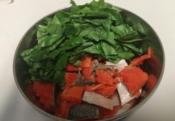 raw diet 1