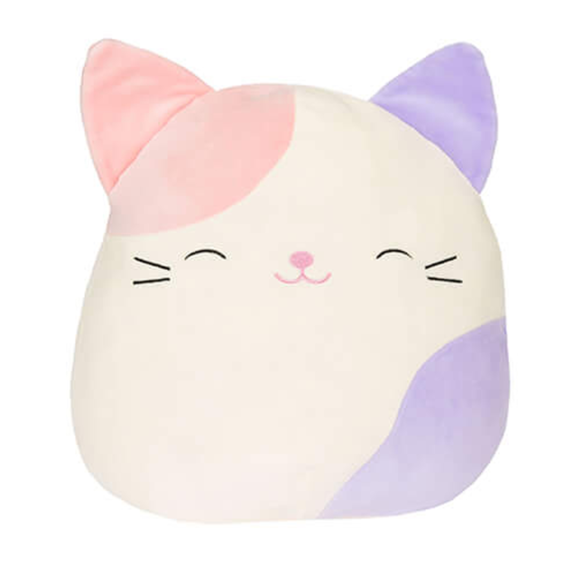 Squishmallows.Cat.Charlotte_