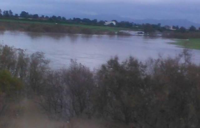 مياه الفيضانات تجتاح الأراضي الفلاحية بجندوبة وفلاحون يطالبون بجبر الأضرار