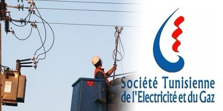 """مدير إقليم الستاغ بالقيروان : هذا """"الطير"""" تسبب في انقطاع التيار الكهربائي"""