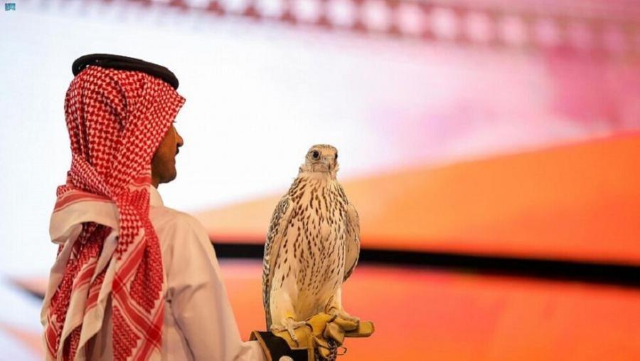 السعودية: بيع أغلى صقر في العالم بنصف مليون دولار !