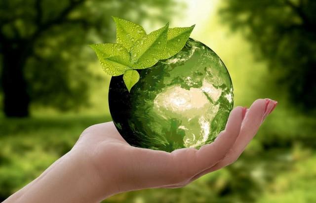 اختيار تونس لاحتضان المؤتمر العالمي للفلاحة البيولوجية 2024