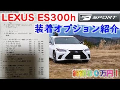 レクサスに付けた80万円分のオプション紹介します! LEXUS ES300h F Sports