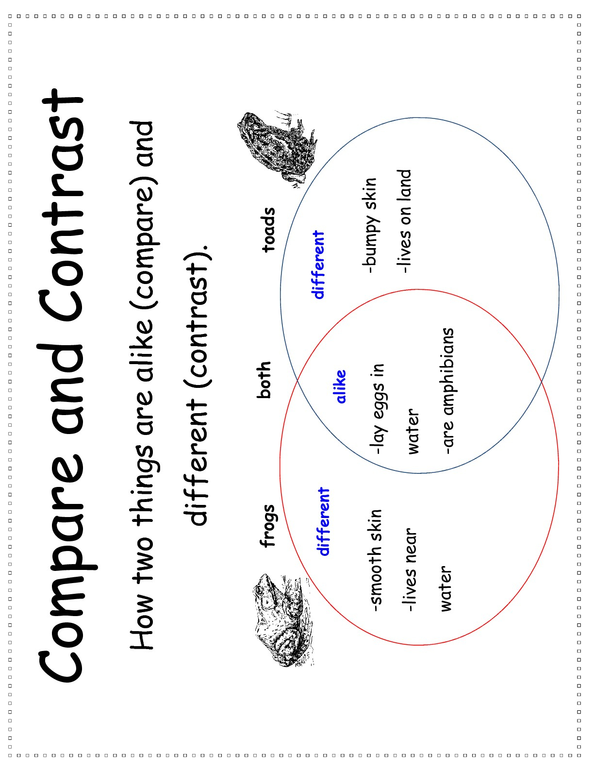 Compare And Contrast Apple And Pumpkin A Worksheet