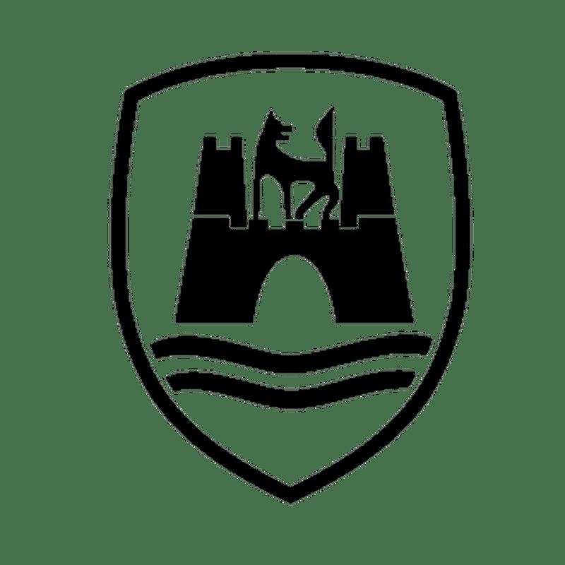 Vw Wolfsburg Logo Sticker