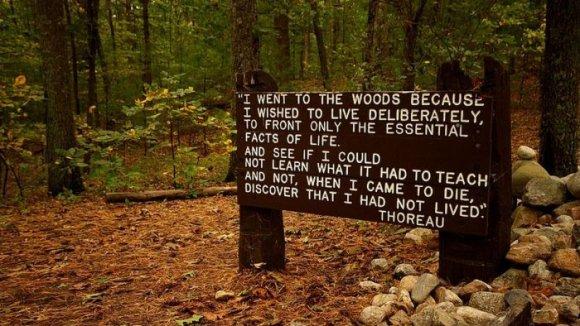 Bord dat staat bij Walden Pond