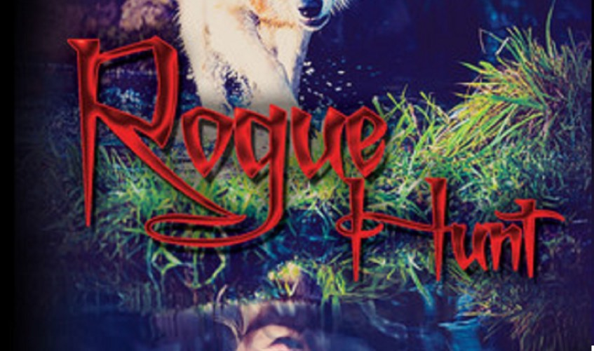 Rogue hunt by LL Raand