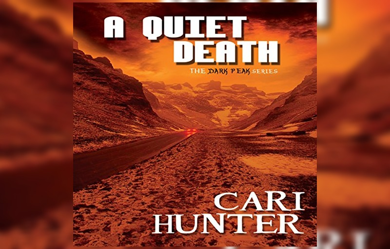 Cari Hunter books
