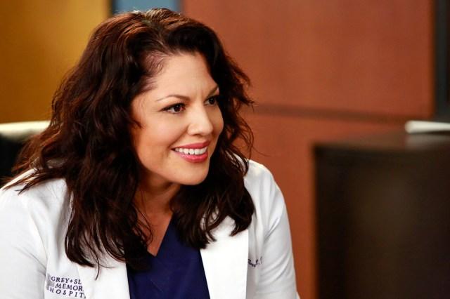 Bisexual Characters - Callie Torres played by Sara Ramierez on Grey's Anatomy