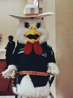 A chicken cosplaying as Officer Haught from Wynonna Earp at ClexaCon 2019. The cosplayer is Chicken Nipples. Seriously. (Photo by Mika Epstein/LezWatch.TV)