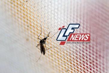 Vírus mais agressivo da dengue avança no Brasil