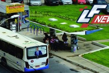 Salvador instala 1º ponto de ônibus com teto verde e temperatura no local cai mais de 5ºC