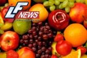 Prefeitura de Lauro de Freitas promove palestra sobre educação alimentar e hábitos saudáveis