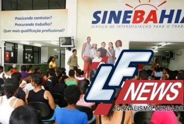 Confira as vagas de emprego para esta quinta-feira (11) em Salvador e Lauro de Freitas