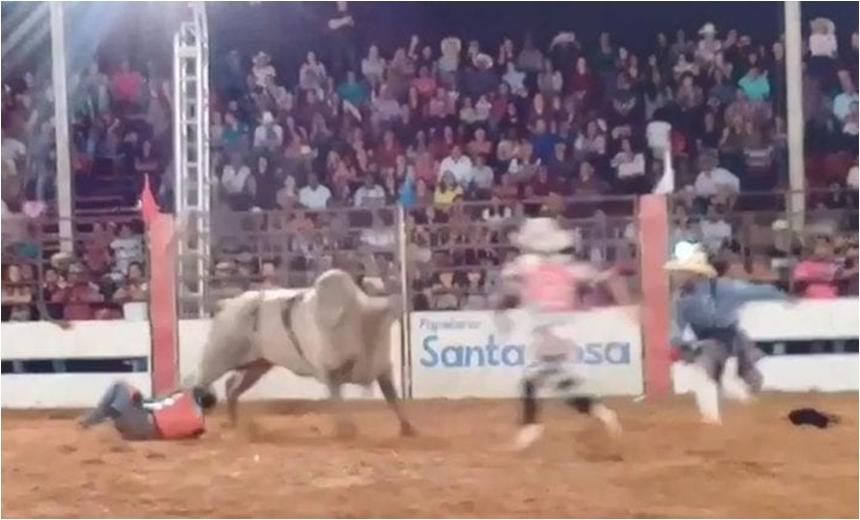 Peão morre após ser pisoteado por touro em rodeio; veja vídeo