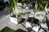 Rui entrega cinco ruas revitalizadas no Politeama
