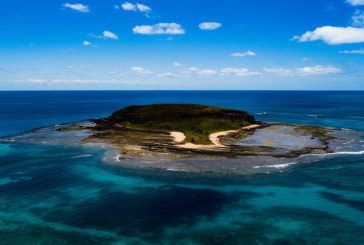 Manchas de óleo chegam ao Parque de Abrolhos, 1ª unidade de conservação marinha do país