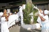 Lauro de Freitas: Árvores são adornadas de branco por adeptos do Candomblé com pedido de paz e respeito