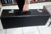 Ghosn fugiu do Japão em um estojo de instrumento musical, diz jornal