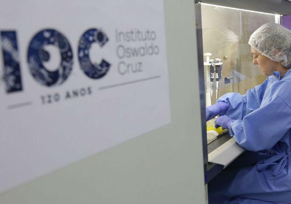 Brasil já registra mais de 70 mil mortos pelo novo coronavírus
