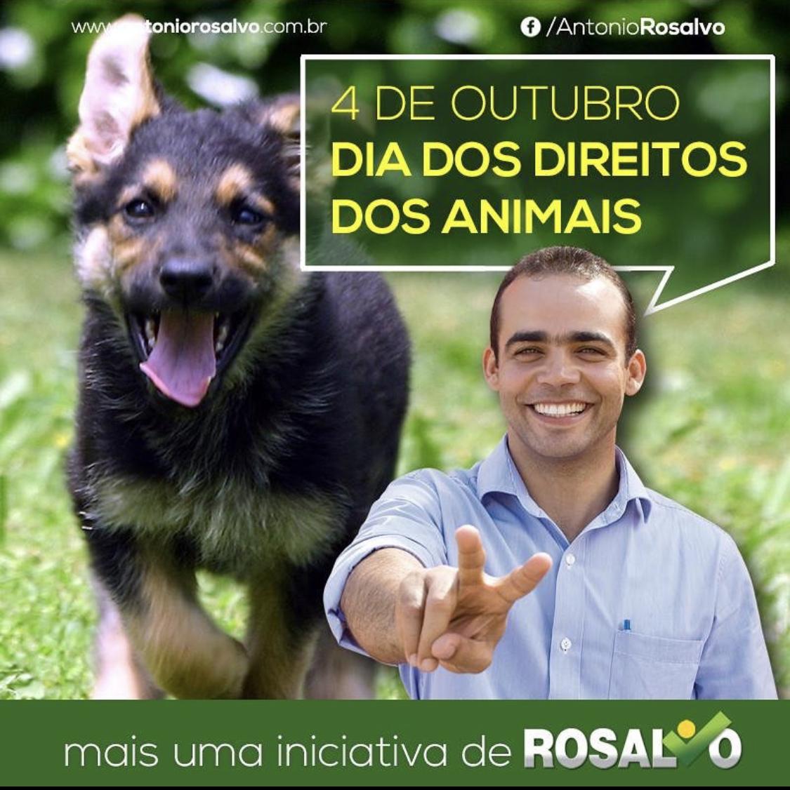 Vereador Rosalvo apresenta requerimento para a criação de uma Superintendência de Proteção Animal