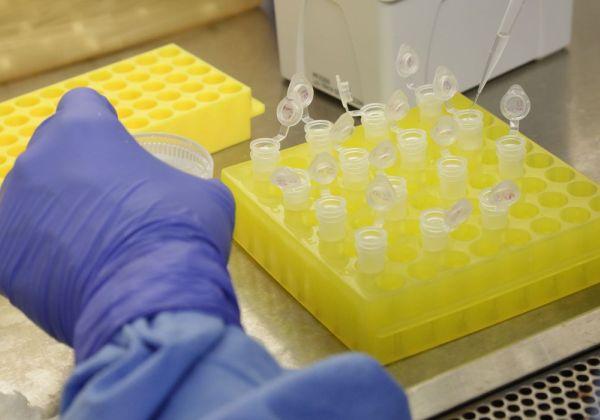 Bahia registra 28 mortes e 815 novos casos de coronavírus em 24h