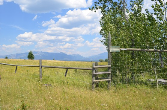 Cattle (left) and wildlife (right) exclosures in the Okanagan