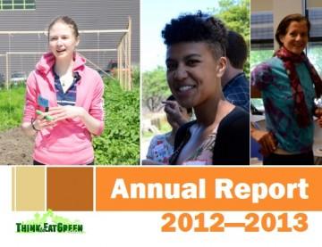 annualreport2012-13 tegs