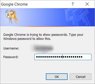 Chrome Windows password