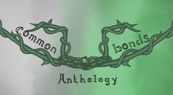 Fiction, Platonic Relationships, and Common Bonds: an Aromantic Roundtable