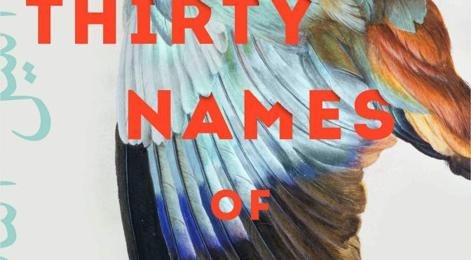 New Release Spotlight: <i>The Thirty Names of Night</i> by Zeyn Joukhadar