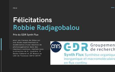Prix du GDR Synth Flux pour Robbie Radjagobalou