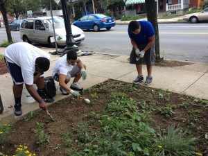 Volunteers helping to maintain residential gardens installed along the 7th block of Allentown.