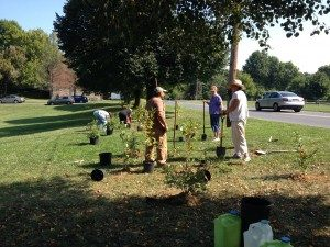 Planting a row of native shrubs to alleviate stormwater erosion at Community Garden near Jordan Creek.