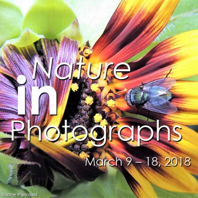 Nature in Photographs Exhibition