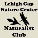 Naturalist Logo for Website