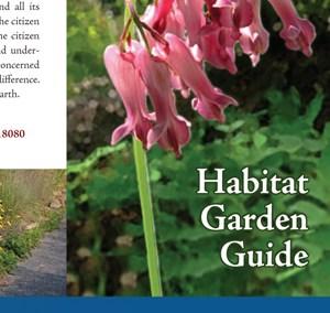 Garden Plan by Habitat
