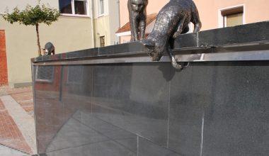 Kačių kiemelis (7)