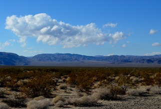 the desert 1_071DSC_0071