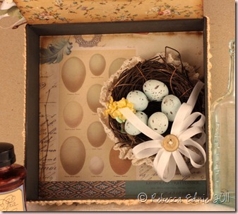 egg shadow box inside