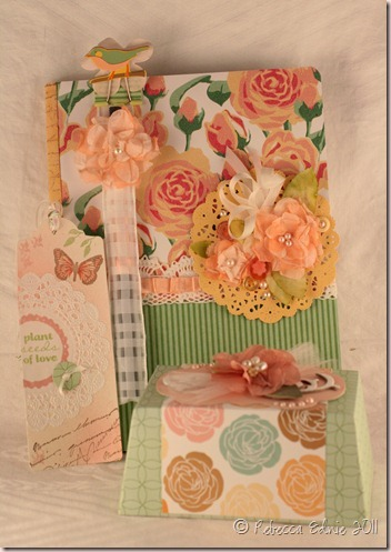 donna gift set 6 box_thumb[1]