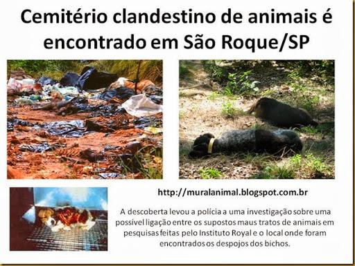 Cemitério clandestino de animais é encontrado em São