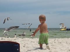 beachtrip2013-maddie 3 month 056