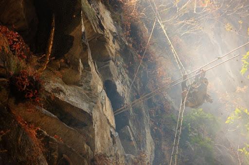honey-cacciatori-nepal-22