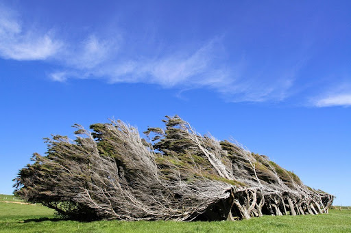 """Résultat de recherche d'images pour """"Slope Point"""""""